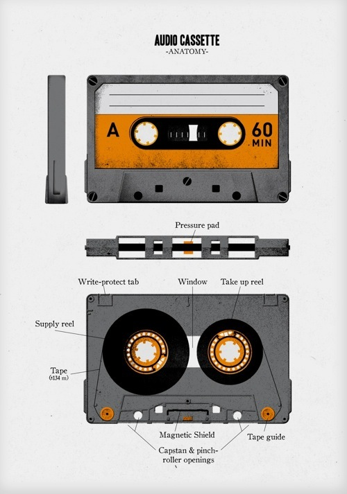 The Anatomy Of A Cassette